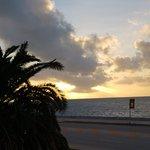 Landscape - Hyatt Residence Club Key West, Windward Pointe Photo