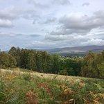 صورة فوتوغرافية لـ Anagach Woods