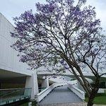 Photo of Museu Oscar Niemeyer