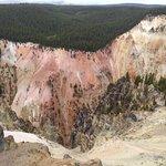 صورة فوتوغرافية لـ Grand Canyon of the Yellowstone