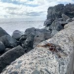 Photo of Praia Formosa Beach  Madeira