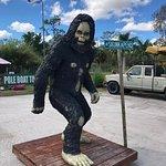 Foto Skunk Ape Research Center