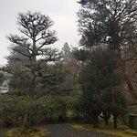 Φωτογραφία: Saihoji Temple