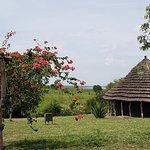 African Adventure Travellers의 사진