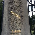 Bild från The Royal Botanic Garden