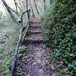 Valokuva: Riserva Naturale Statale Valle dell'Orfento
