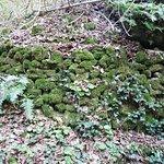 Foto Riserva Naturale Statale Valle dell'Orfento