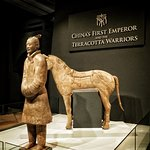 Terracotta Army at Liverpool World Museum