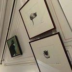 Photo de The Cat Cabinet