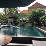 Pool - Ubud Aura Retreat Photo