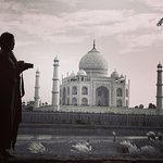 "An amazing experience with ""Incredible Taj"""