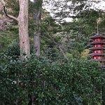 Zdjęcie Otaka no Michi Spring Park