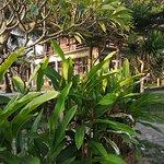 Kijalena Inn صورة