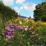 Photo of Fondation Claude Monet