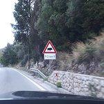 Watchout!!! Boars ahead!!!