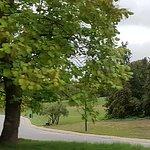 Photo of Parc de Bruxelles (Warandepark)