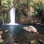 Bilde fra Iyon Stream Nature Reserve