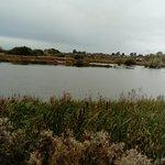 Φωτογραφία: Doxey Marshes Nature Reserve