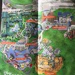 Layout Of Disney California Adventure Park!