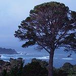 Landscape - Hyatt Residence Club Carmel, Highlands Inn Photo