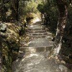 Devils Punchbowl Walking Track - well-formed trail