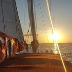Photo de Dolphin Landings Charter Boat Center