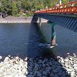 Zdjęcie Uji River