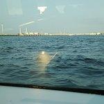 横滨Seabass渡轮照片