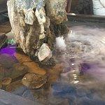 Springbrunnen mit Goldfischen im Lokal