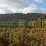 Lake Grasmere resmi