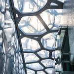 Inside the Water Cube, Beijing, China