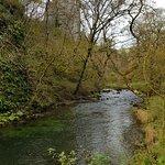 Bild från Dovedale