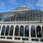Foto de Palm House