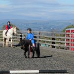 Φωτογραφία: Tregoyd Mountain Riders