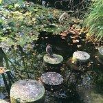 Photo de Japanischer Garten