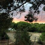 Photo de Parque Aventura