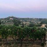 The scenic view surrounding Villa Margherita