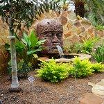 Mercer Arboretum & Botanic Gardens의 사진