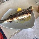 Foto van Erasmia to Petani