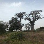 Petite balade sur l île de Niodior avec Karim