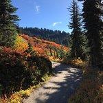 Skyline Trail resmi