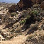Grapevine Canyon resmi