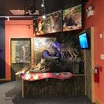 National Wildlife Refuges Visitor Center照片