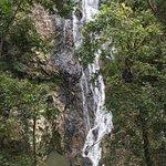 Foto Kondalilla Falls