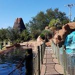 Foto di Adventure Island