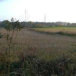 Photo de Parco Agronaturale della Dora Riparia