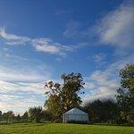 Landscape - The Little Yurt Meadow Photo