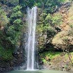Kamokila Hawaiian Vllage照片