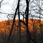 Forestville/Mystery Cave State Park resmi