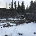Winter comes early to the mountains. Hiking the Three Lakes Trail, Denali National Park. October